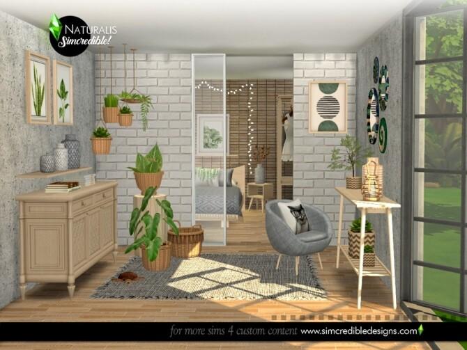 Sims 4 Naturalis Extras by SIMcredible at TSR