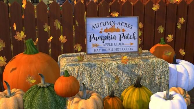 Pumpkin Patch Signs
