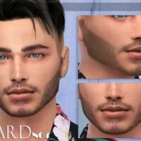 Beard N04 by MagicHand