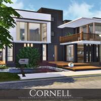 Cornell house by Rirann