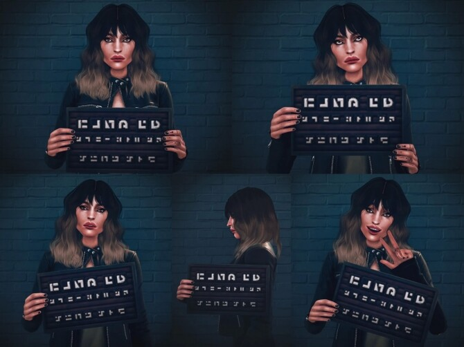 Sims 4 Mugshot Poses at Katverse