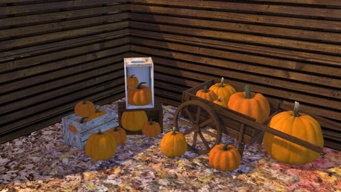 Sims 4 Pumpkin Patch Decor at Sunkissedlilacs