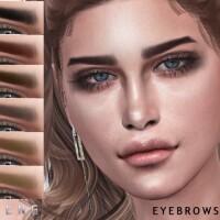 Eyebrows N84 by Seleng