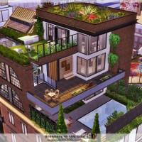 Greenery in the City house by Danuta720