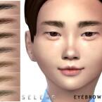 Eyebrows N87 by Seleng