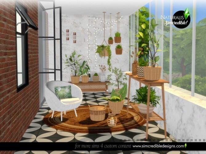 Sims 4 Naturalis Plants by SIMcredible at TSR