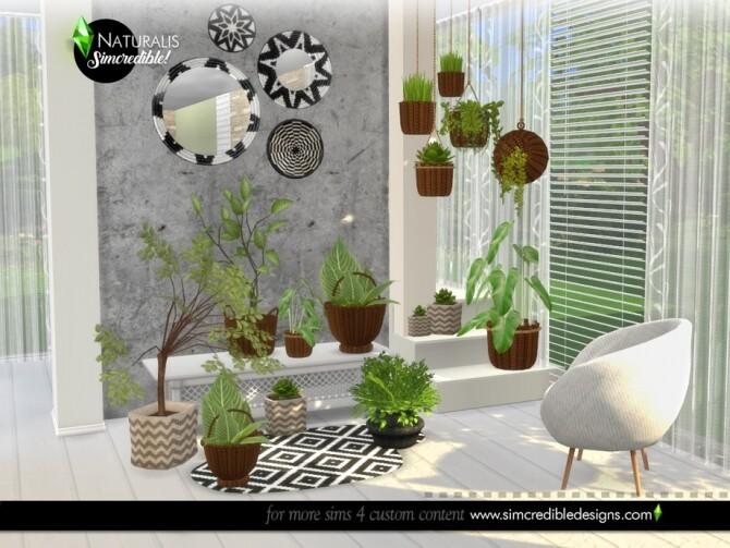 Naturalis Plants by SIMcredible at TSR image 7118 670x503 Sims 4 Updates