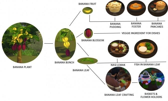 HARVESTABLE BANANA PLANT at Icemunmun image 934 670x403 Sims 4 Updates