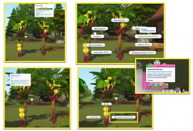 Sims 4 HARVESTABLE BANANA PLANT at Icemunmun