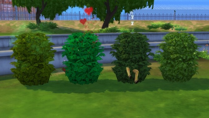 Plain Interactive Bushes by Ellawese