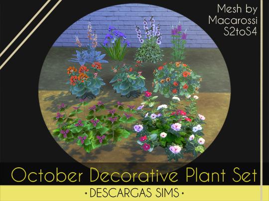 October Decorative Plant Set