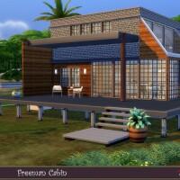 Freeman Cabin by evi