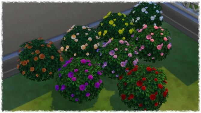 Mumumental Fall Mums Shrub 2020 by Wykkyd at Mod The Sims image 1512 670x377 Sims 4 Updates
