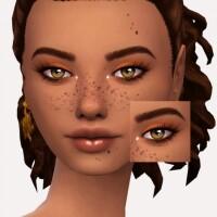 Chocolate Truffle Eyeshadow by Sagittariah