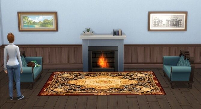 Aubusson Elegant Rugs Set 4 by Wicked Old Witch