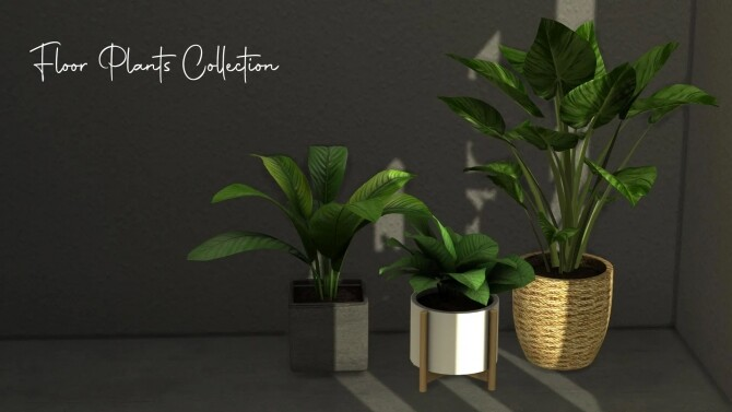Floor Plants Collection at Sunkissedlilacs image 2121 670x377 Sims 4 Updates