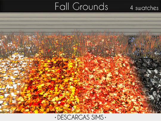 Fall Grounds