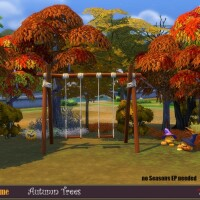 Autumn trees by evi