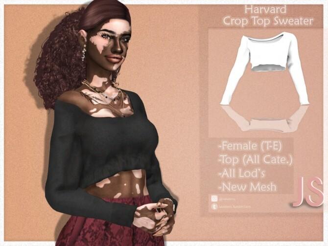 Harvard Crop Top Sweater by JavaSims
