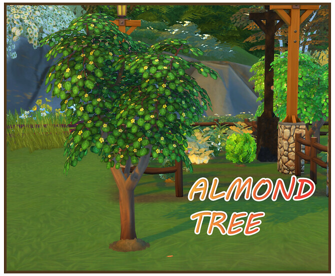 Sims 4 HARVESTABLE ALMOND at Icemunmun