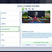 Gymnastics Coaching Career By Naomiking3