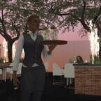 The Sky Bar & Restaurant