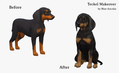 Sims 4 Dachshund dog makeover at Blue Ancolia