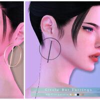 Circle Bar Earrings By Darknightt