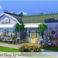 Flower Shop By Nolcanol