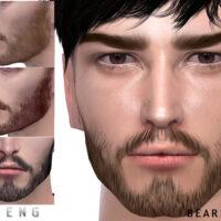 Beard N73 by Seleng
