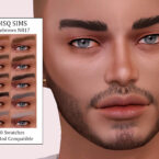 Eyebrows NB17 by MSQ Sims 4