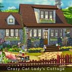 Crazy Cat Lady's Cottage By A.lenna