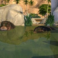Hippos Heaven