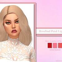 Rosebud Petal Lip Tints By Ladysimmer94