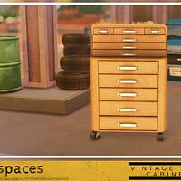 Vintage Tool Cabinet By Simspaces