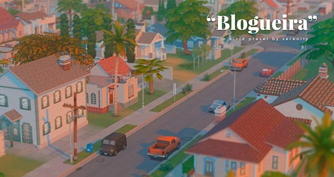 Blogueira Sims 4 Reshade Preset