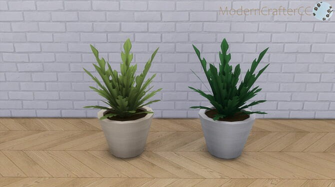 Contemporary Sims 4 Radishly Plant
