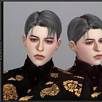 Seonbi Sims 4 Hair For Males