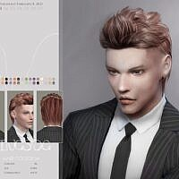 To0208 Sims 4 Hair For Males