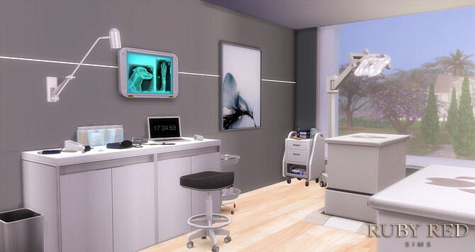 Sims 4 Vet Clinic and Pet Shop at Ruby Red