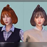 Female Hair G40 By Daisysims