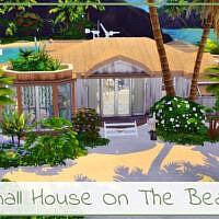 Small House On The Beach By Simmer_adelaina