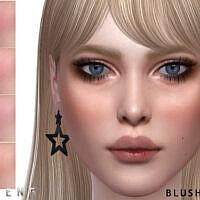 Blush N34 By Seleng
