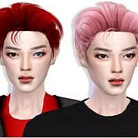 H010 Taeyong Hair