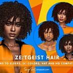 Zeitgeist Afro Hair
