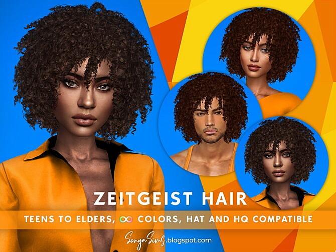 Sims 4 Zeitgeist Afro Hair at Sonya Sims