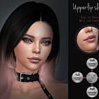 Upper Lip Slider Set