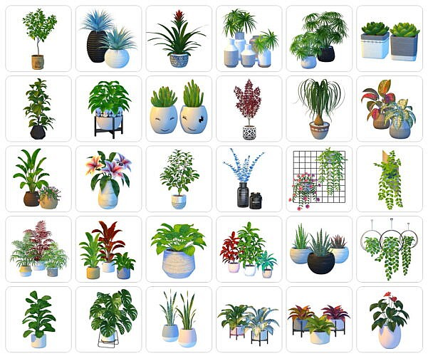 60+ Plants