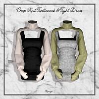 Crop Knit Turtleneck & Tight Dress