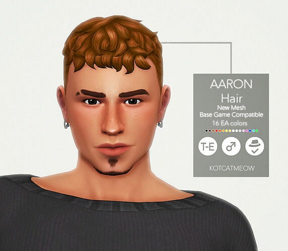 Aaron Hair For Males